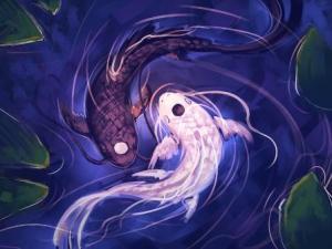 Kisah Yin dan Yang